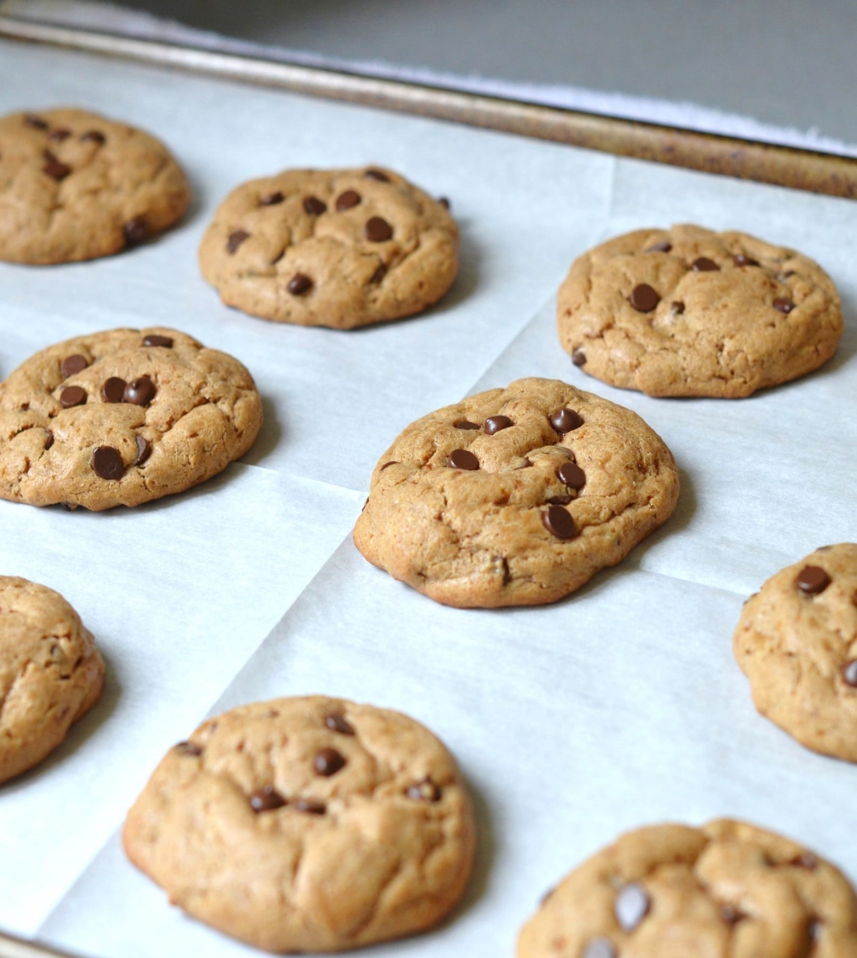 The BEST EASY Dairy Free Chocolate Chip Cookies! - 24 Carrot Kitchen