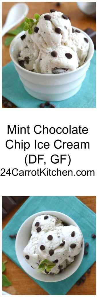 Mint Chocolate Chip Ice Cream - 24 Carrot Kitchen