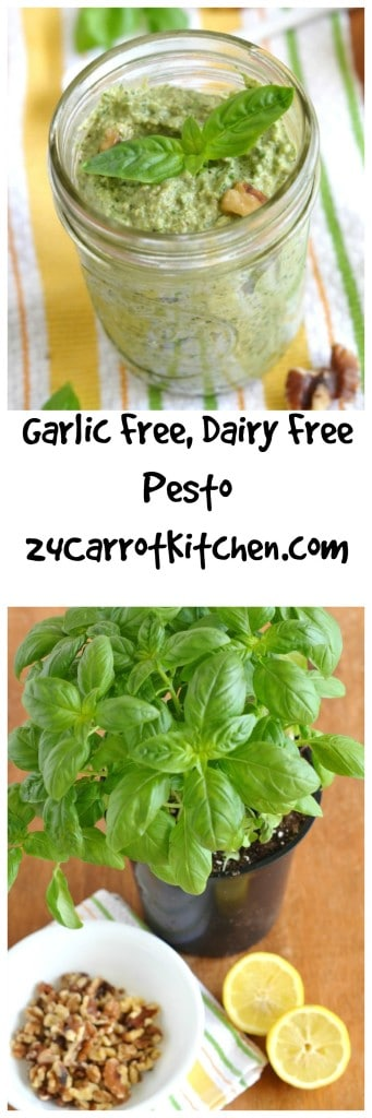 Garlic Free Pesto - 24 Carrot Kitchen
