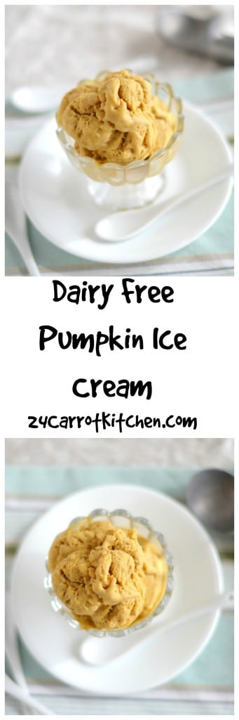 Dairy Free Pumpkin Ice Cream - 24 Carrot Kitchen