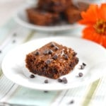 Pumpkin Chocolate Chip Squares - grain,gluten and dairy free! 24 Carrot Kitchen