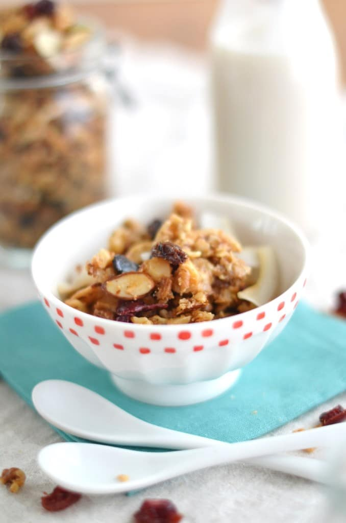 Grain Free Cranberry Nut Granola - 24 Carrot Kitchen