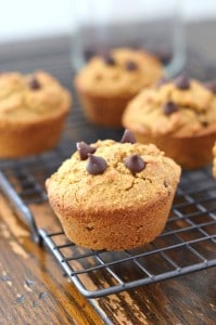 Bakery Style Grain Free Almond Flour Chocolate Chip Muffins - 24 Carrot Kitchen