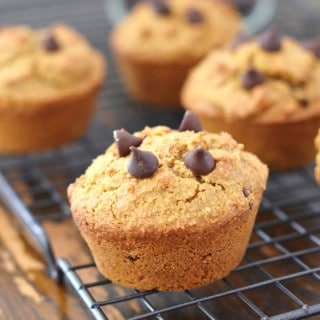 Bakery Style Grain Free Almond Flour Chocolate Chip Muffins