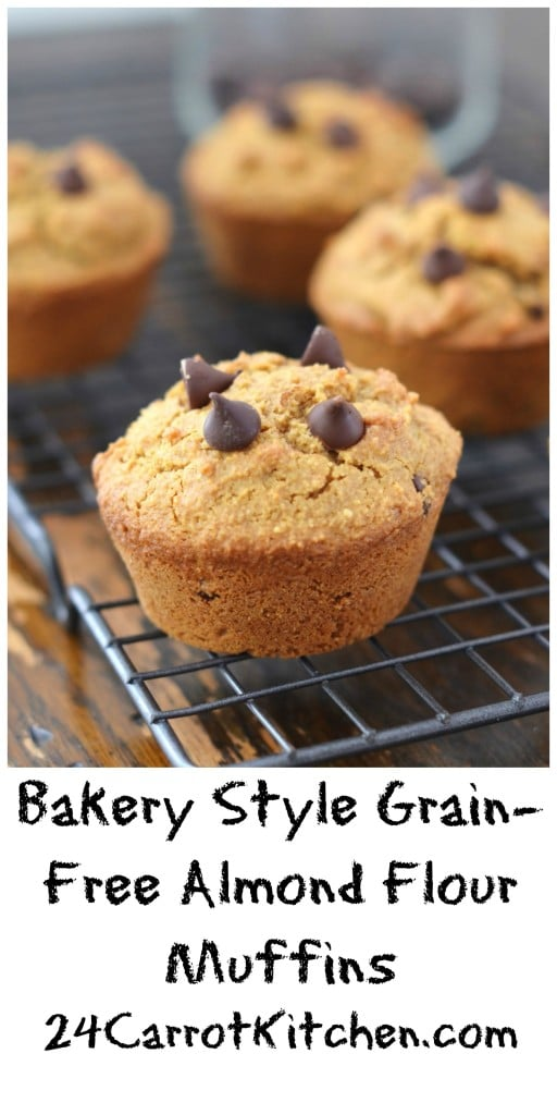 Bakery Style Grain-Free Almond Flour Chocolate Chip Muffins - 24 Carrot Kitchen